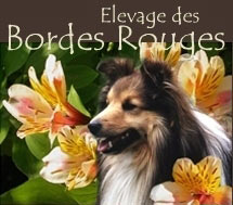 Elevage des Bordes Rouges